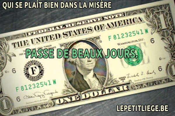 Belle Pensée Belge