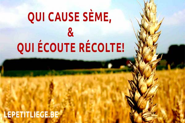 Proverbe Belge